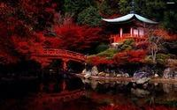 autumn-in-the-japanese-garden-6187-2880x1800