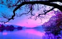 purple-sunset-8782-2560x1600
